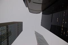 Hongkong novembre 2007 (miiichou) Tags: building d50 hongkong ville mgapole