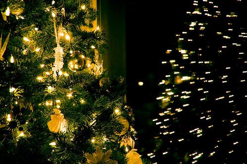 oscarson family christmas_14.jpg