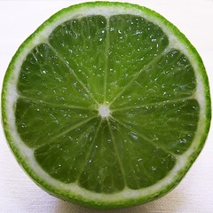 Lime (steph.A) Tags: green fruit circle square juicy citrus lime crosssection 500x500 auselite