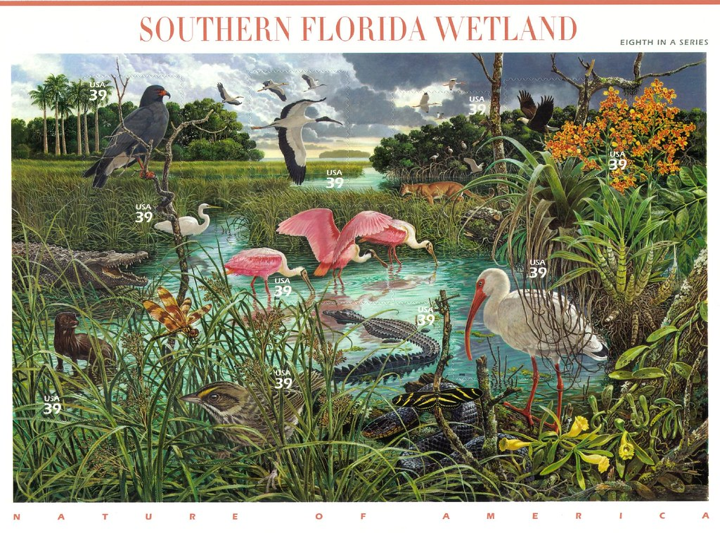Southern Florida Wetland - Nature of America No. 8