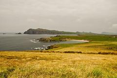 Dingle Landscape (Ed Guiry) Tags: ireland nikon youghal realireland nikond80 edguiry hedirey nikond700 canong9 nikond300 youghalphotographer