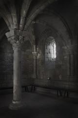 The Column (goodeye22) Tags: abbey photography flickr pillar medieval monks cloisters monastary abigfave platinumphoto aplusphoto copyrightedmaterial keithkrejci goldstaraward great123 longislandphotographer