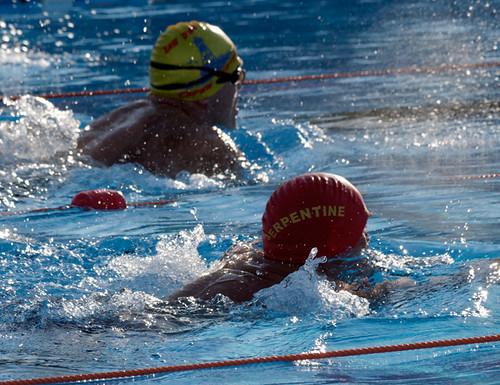 International winter swimming championships