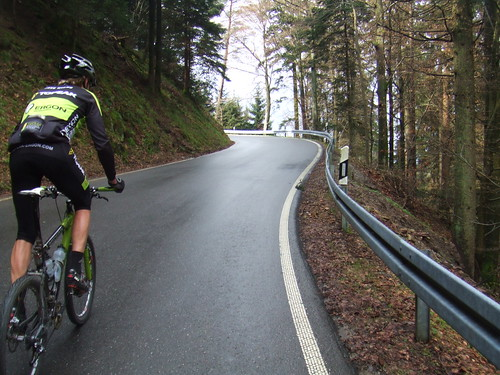 Riding in the Black Forest