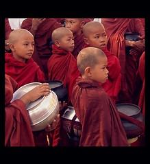 (makita ^) Tags: people children asia burma religion help monks myanmar makita monjes themoulinrouge freeburma fivestarsgallery aplusphoto platinumheartaward theperfectphotographer lpred