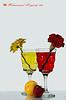 Red & Yellow (Mohammad Al-yaeesh محمد اليعيش) Tags: ورود صورة الوان طبيعه زهر صامته كسات