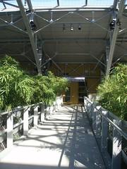 SCS_051007-103.JPG (wonderK) Tags: greenroof californiasciencecenter morphosis sciencecenterschool