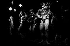 Altered Bodies (Osvaldo_Zoom) Tags: show man muscles altered blackwhite women body bodybuilding fitness bodies faceoffwinner photofaceoffwinner pfogold
