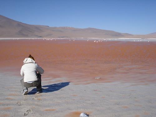 Fotografa en Laguna Colorada