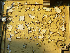 Sensazioni di vita (Felson.) Tags: muro wall vecchio intonaco stanze rovinato massimovolume villaborromeo songstanzemassimovolume mrmassimovolume