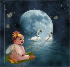 Swan Lake (Cytosue) Tags: baby moon reflection water photoshop photo swan wings dragonflies digitalart manipulation fairy swans magical lilypad larra enchanting flowerhat