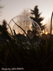 Close up on a Bubble (johnadams1217) Tags: sunset grass bubbles bubble