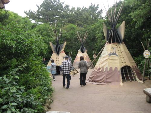 インディアンキャンプ