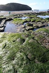 MRP_7356 (preedyphotos) Tags: cornwall kernow portreath beach coast northcornihcoast rocks tidesout walkingonbthebeach beachwalking outdoors exercise sand martinpreedy canon eos1dx