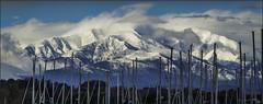 Le Canigou (jyleroy) Tags: canigou fz200 lumix panasonic ciel nuages pyrénéesorientales argelèssurmer montagne mountain neige snow snowylandscape nationalgeographicgroup ngc