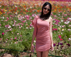 Now this girl knows how to dress when visiting the flower fields (San Diego Shooter) Tags: girls portrait girl cool dress sandiego streetphotography carlsbadflowerfields uncool carlsbad pinkdress cool2 flowerdress sandiegopeople sandiegostreetphotography uncool2 uncool3 uncool4 uncool5 uncool6 uncool7 sandiegoflowerfields