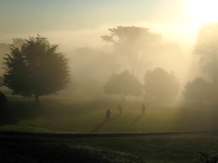 Putting in bright morning fog (2composers) Tags: sanfrancisco morning trees sun green fog golf course lincolnpark excapture compositionsphotography