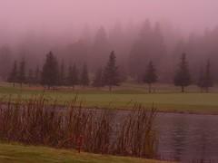 Pond (Quiltsalad) Tags: fall nature oregon golf landscapes wondersofnature