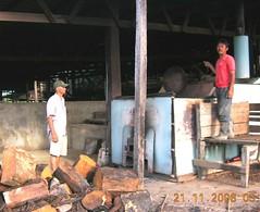 artificialdryingbeans6 (nagacocoa) Tags: farm philippines nursery palm oil dumaguete agriculture cocoa planter bicol flowchart fermentation zamboanga upland sieve cacao nagacocoa coconutintercropping
