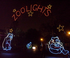 Zoolights arch