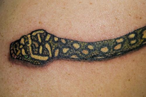 Python Tattoo