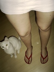 (jamile ...) Tags: red white me cat legs flipflops