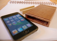 Mahogany iPod Case by mjdinsmore
