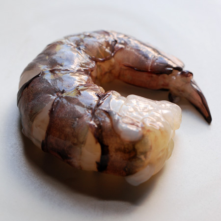 queensland black tiger prawns