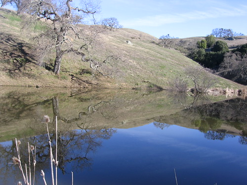 Bass Lake at Grant Ranch