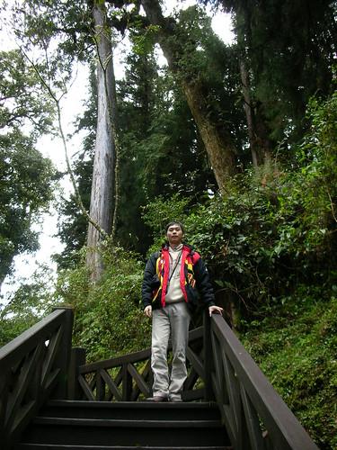 和巨木合照