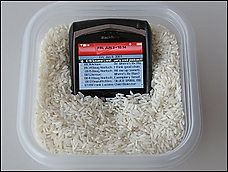 celular_arroz
