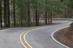 Timber Road switchback