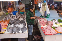 Coquimbo Fish Market (Sam Schmidt) Tags: ocean chile fish coquimbo butcher fishmarket