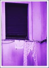 Ummmm...fresh smelling lavender! (♡ Popotito ♡) Tags: blue color building window azul ventana nice colorful artistic edificio creative lavender dry rico clothes wash laundry smell pegs peg washing ropa hung aroma artistico colgada lavanda smelling olor lavado creativo lavar secar popotito