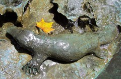 Platypus on Children's Fountain