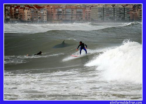surf tiburón 1
