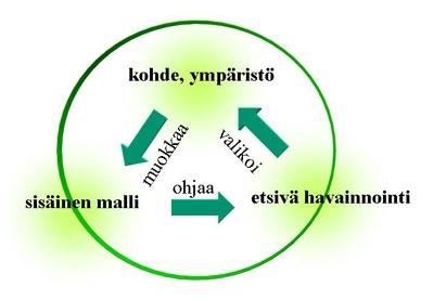 kognitiivinen käyttäytymisterapia Kouvola