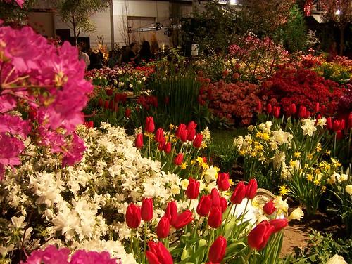 flowershow 060