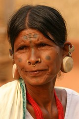 india - orissa (Retlaw Snellac Photography) Tags: travel portrait people india tourism canon photography photo tribal tribes tribe stretched orissa stretchedearlobes odisha lanjiasaora noseringthefeminine stretchedearpiercing