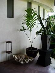 interior decor (amyjccd) Tags: bali ma joly 景觀餐廳 觀海餐廳