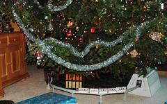 Disney under the Tree (Ray Horwath) Tags: christmas tree contemporary disney monorail poly polynesian horwath disneyphoto disneyphotos disneyphotochallenge disneypix rayhorwath disneyshots disneycaptures disneyphotographs