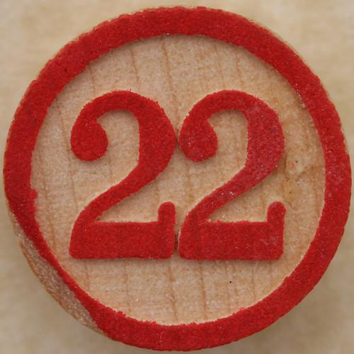 Bingo Number 22