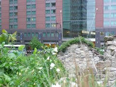 NYC Irish Famine Memorial