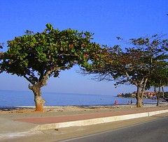 Iguaba Grande (Liz_RJ) Tags: corpuschristi crepusculo regiodoslagos