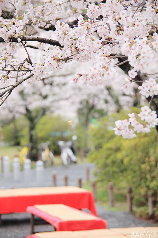 陰雨天的京都嵐山