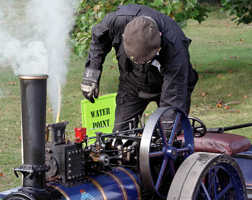 Steam in the gardens, Exbury