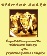 Diamond Award PICT4714