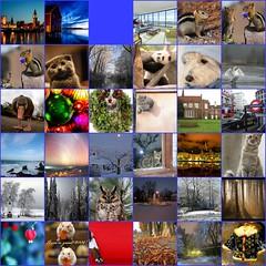 2008 favorites week 1 (Agnes Dorotea) Tags: autumn red sea dog cats london fountain landscape swan fdsflickrtoys kitten stockholm interior westie goose chipmunk owl hamster christmasdecoration winterwonderland startrails drammen varadin babypanda