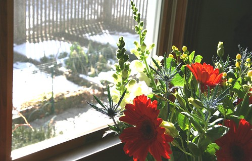 flowers by the window