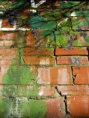paint brick